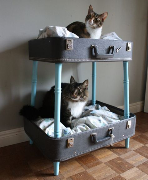 vintage-suitcase-bunk-pet-bed-blues-and